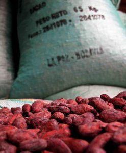 ORGANIC 100% RAW CACAO POWDER SUPERFOOD COCOA FAIR TRADE 10kg
